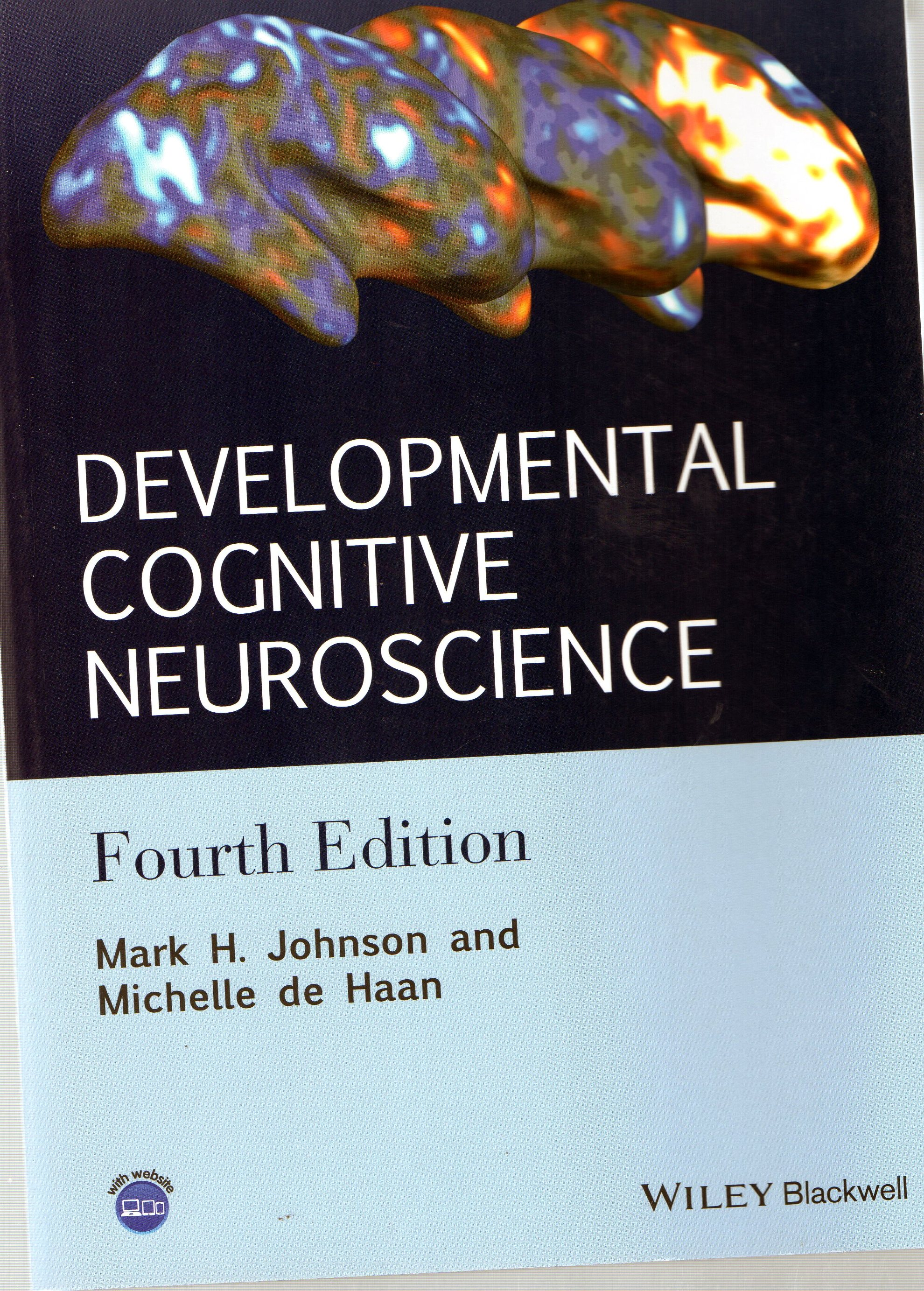 cognitive neuroscience The research component of this division focuses on cognitive-experimental and neuroimaging approaches to cognitive functioning across the life span there is an.